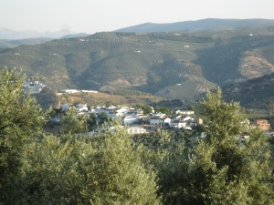 A little white hill town peeking out of the olives in Andalucia, Spain
