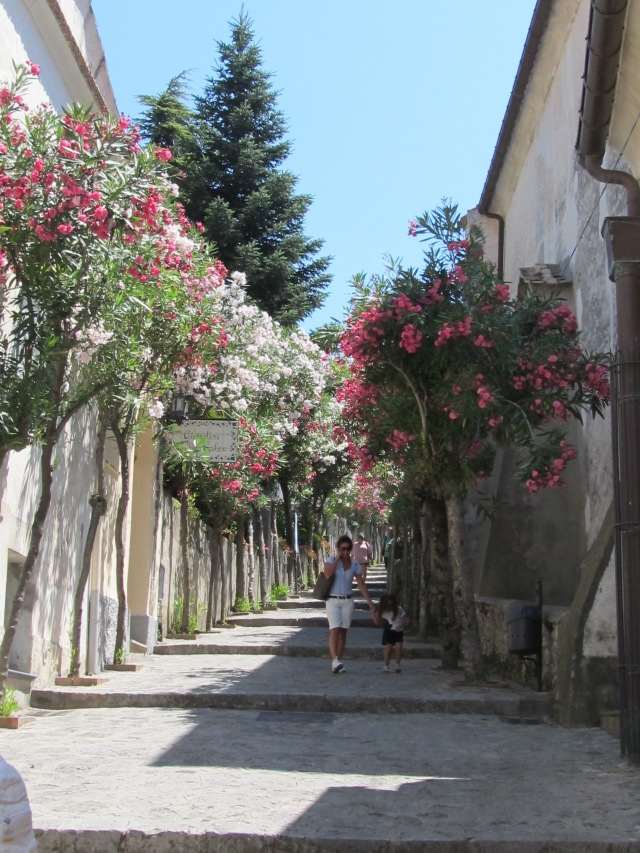 A lovely tree lined lane in Ravello