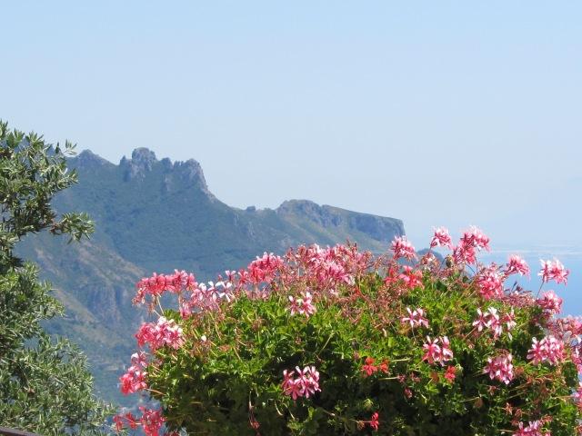 A View from Villa Ciambrone Gardens