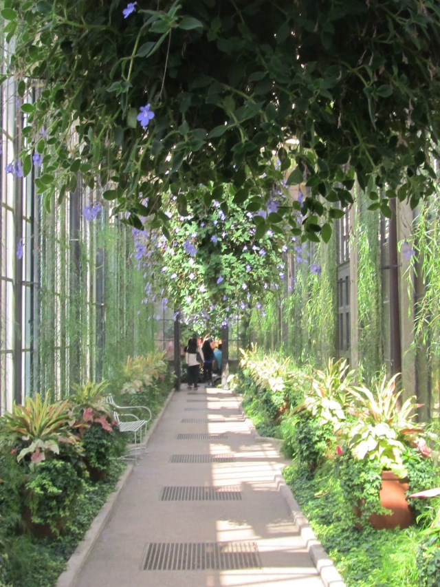 Longwood Gardens, Pennsylvania...One of the places I visited this summer which helped me recharge my batteries, so to speak!